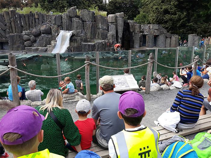 tábor letem zoo světem