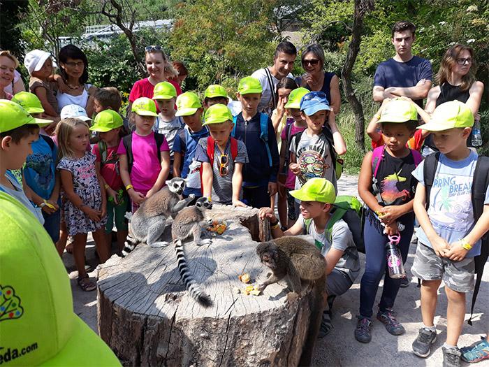 příměstský tábor zoo